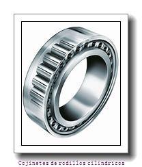 HM129848 -90155         Cojinetes de rodillos cilíndricos