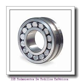 25 mm x 60 mm x 9 mm  NKE 54306+U306 Cojinetes De Bola