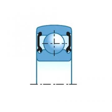 45 mm x 75 mm x 19 mm  INA 712076410 Cojinetes de bolas profundas