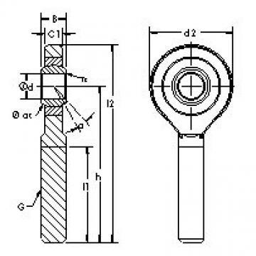 AST SA20C Rodamientos Deslizantes