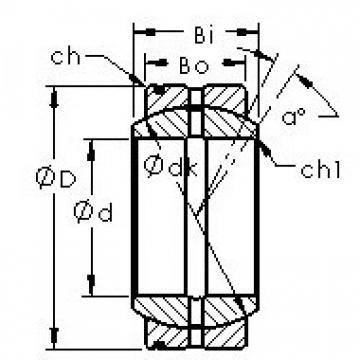 AST GE20XS/K Rodamientos Deslizantes