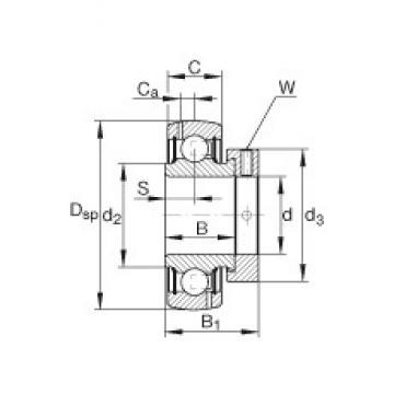 INA GRA107-NPP-B-AS2/V Cojinetes de bolas profundas