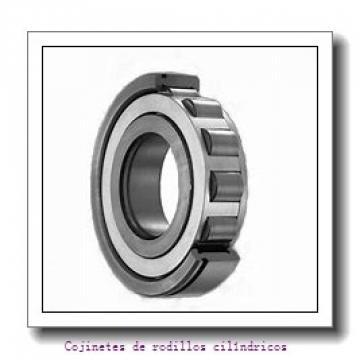 Axle end cap K412057-90011        Cojinetes de rodillos cilíndricos