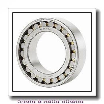 Pipe plug K46462        Cojinetes de rodillos cilíndricos