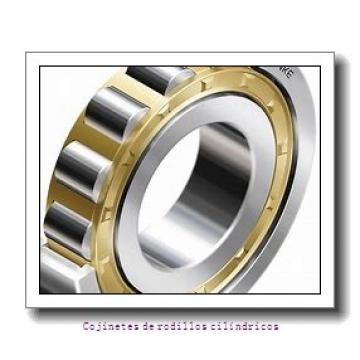 HM120848-90154 HM120817YD 2 1 ⁄ 4 in. NPT holes in cup - E33239       Cojinetes integrados AP