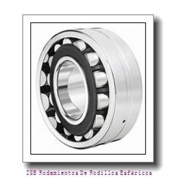 20 mm x 42 mm x 16,7 mm  INA RALE20-NPP-FA106 Cojinetes de bolas profundas
