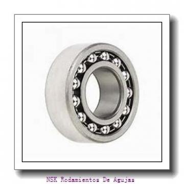 AST ASTEPB 1012-10 Rodamientos Deslizantes