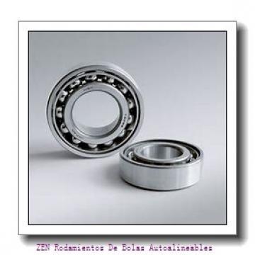AST ASTEPBF 5055-50 Rodamientos Deslizantes