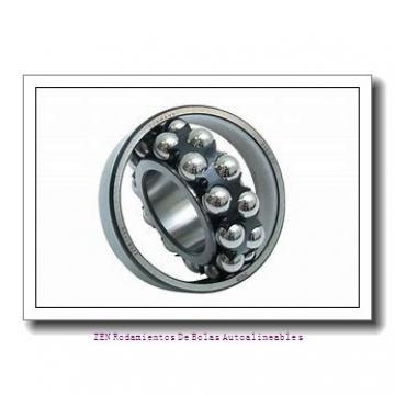 AST AST090 3225 Rodamientos Deslizantes